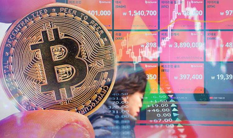 Investičné bubliny, ktoré vás prinútia opäť popremýšľať nad Bitcoinom