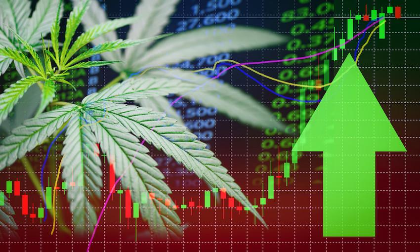 7 marihuanových akcií, ktoré pred letom porastú